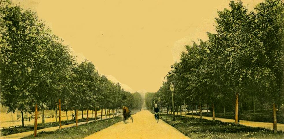Vykort Norra Promenaden 1904.