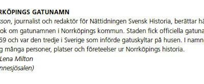 De Svenska Historiedagarna