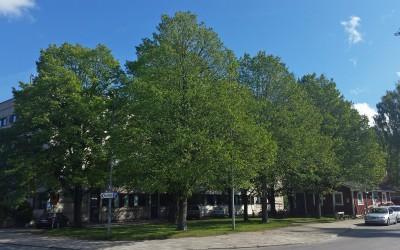 Hyrkuskens park
