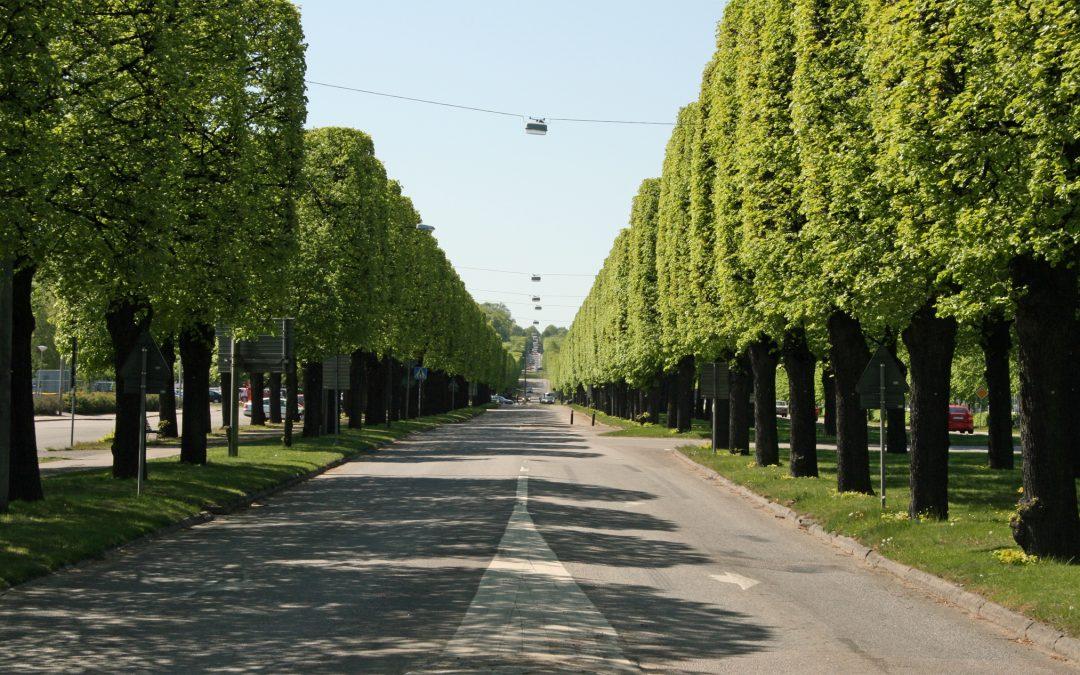 Norra Promenaden. Foto: Sakletare (Wikimedia Commons Public domain)