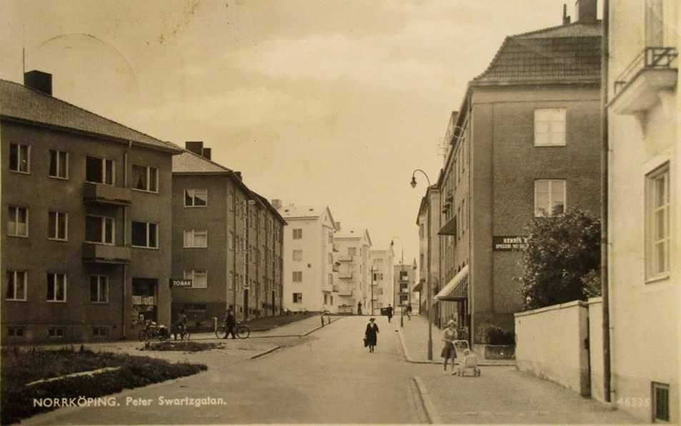 Petter Swartzgatan