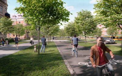Länsstyrelsen säger ja till att byta ut träden på Östra Promenaden